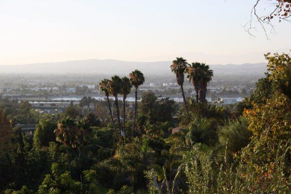 Homestay View